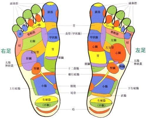 足裏マッサージで体を元気にする!足裏のツボを刺激することで体の不調の改善や健康維持・リラックス効果も高い!