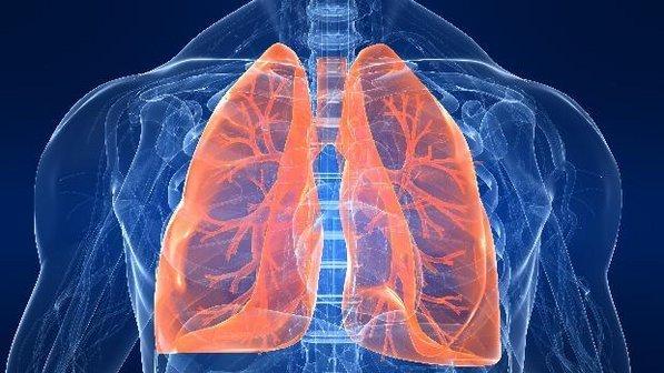 タバコをやめた瞬間から体に驚くべき変化が起こる!!タバコをやめて健康な身体を維持しましょう!