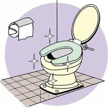 トイレ掃除で開運!金運を上げるトイレのお掃除方法とは?