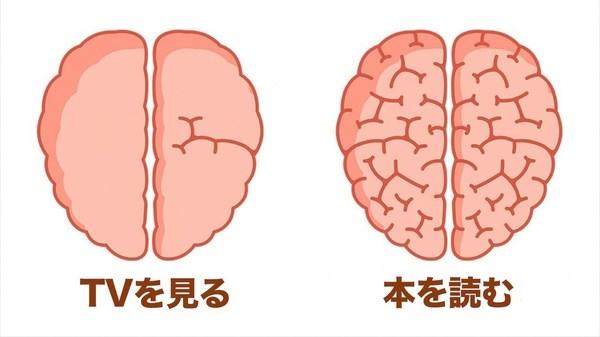 知っておきたい脳のこと!脳に良いこと悪いこと8選!